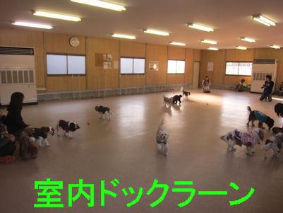 2012.1.9室内
