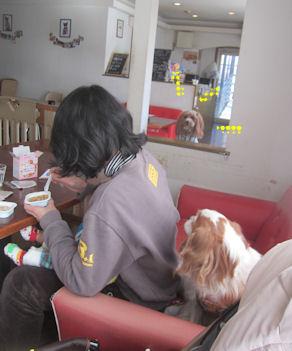 2012.1.15ともちゃんもお食事