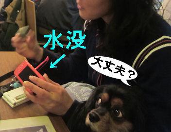 2012.1.15大丈夫~?