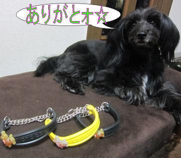 2012.1.17愛ちゃんありがとう