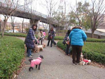 2012.1.28お散歩