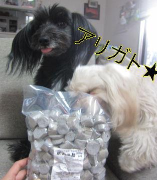 2012.1.15おみや