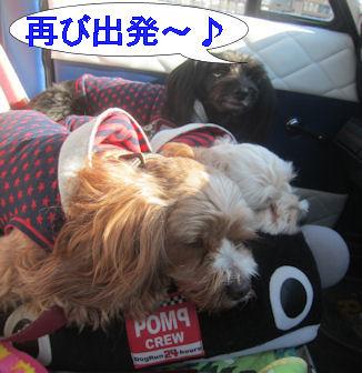 2012.2.4再び出発