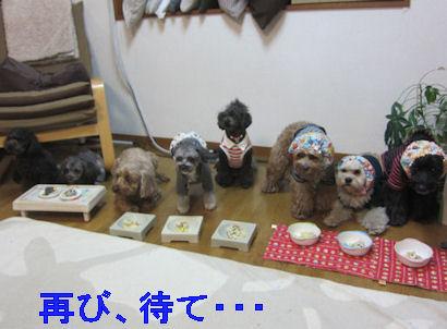 2012.3.20再び