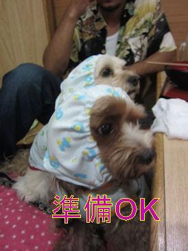 2011.8.21準備OK