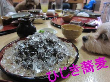 2011.8.21ひじきそば