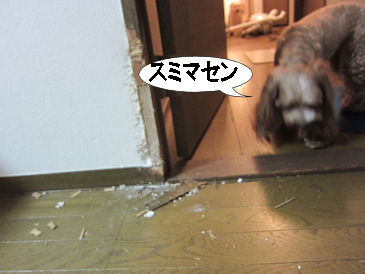 2011.8.26スミマセン・・・