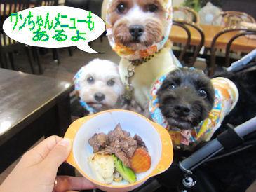 2011.8.28わんめにゅ~