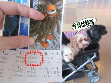 2011.9.4ワンちゃん用