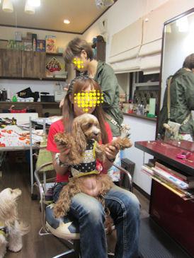 2011.10.1店内へ