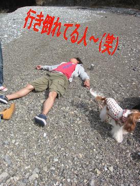 2011.10.2行き倒れてるひと