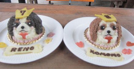2011.10.2ケーキ