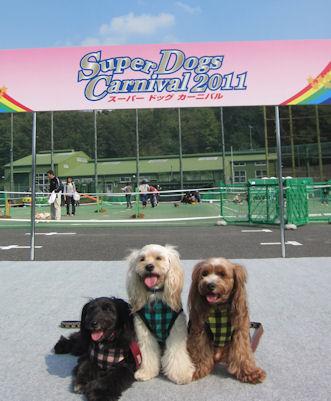 2011.10.9すーぱードックカーニバル