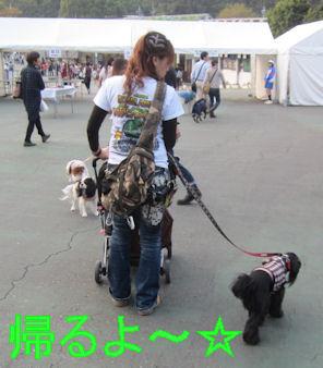 2011.10.9帰るよ~