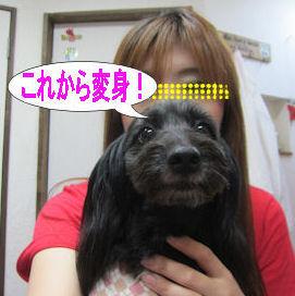 2011.10.22変身