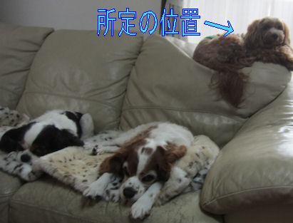 2011.10.30所定