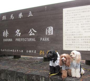 2011.11.6榛名湖公園