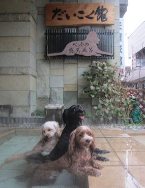 2011.11.6みんなで温泉