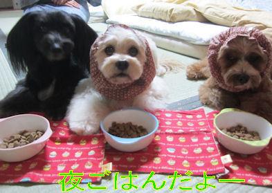 2011.11.6チビ夜ご飯