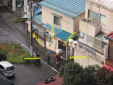 2011.11.7お散歩中