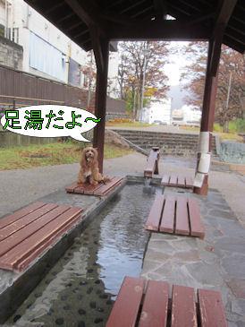 2011.11.7足湯くる