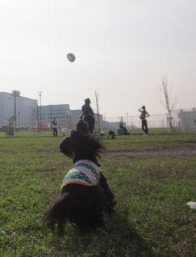 2011.11.13ジャンプなつ