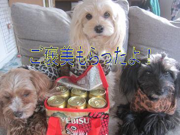 2011.12.30ご褒美