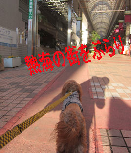 2012.1.2熱海