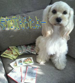 2011.10.10参加賞