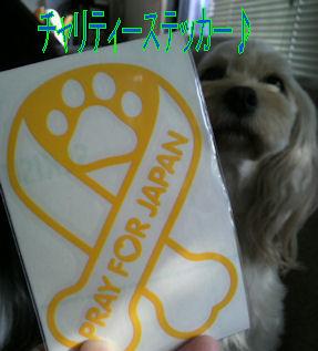 2011.10.10すてっかー