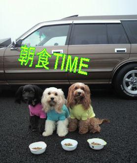 2011.10.23朝食
