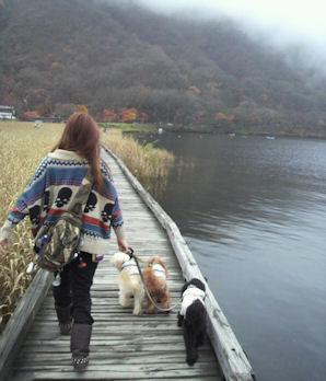 2011.11.6歩くよ~