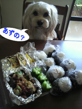 2011.11.13昼飯