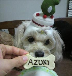2012.1.17クッキー