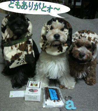 2012.1.17クレジュリちゃんありがとう