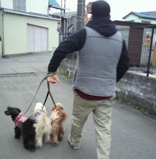 2012.2.26お散歩