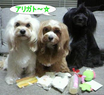 2012.3.15ベキパルちゃんありがとう