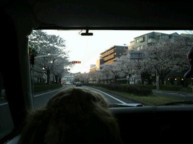 2012.4.8通り