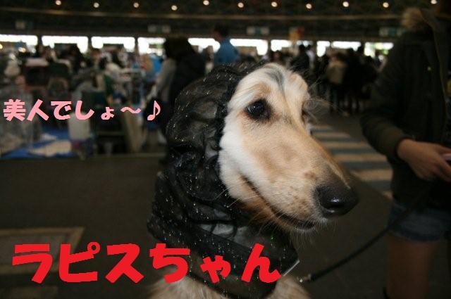 名古屋インター2008.3.2 0570