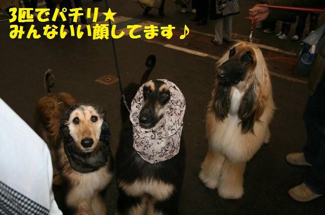 名古屋インター2008.3.2 0640