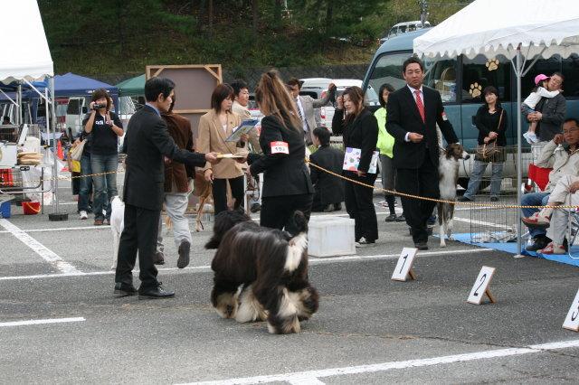 姫路ドックショー20.10.25 131_130