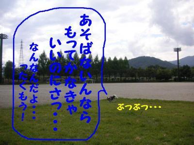 109-9.jpg