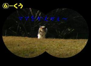 115-61.jpg