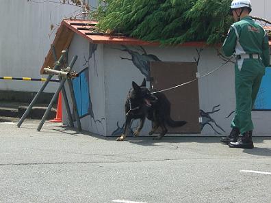 090823総合防災訓練 002