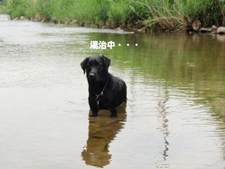 水遊びより温泉に浸かりたいわ・・・