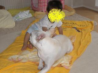 CIMG2736_convert_20080713013201.jpg