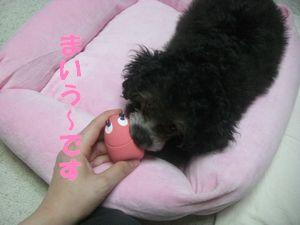 ピンクのたまごちゃん