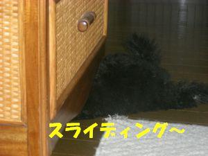 200903161.jpg