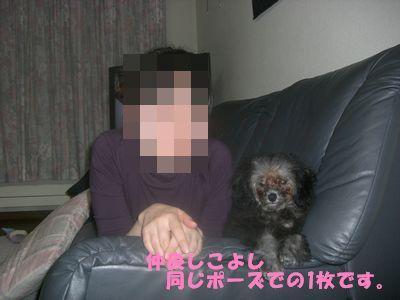 200904230.jpg