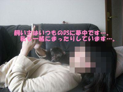 20090425.jpg